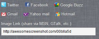 awesome_screenshot_google_chrome_004