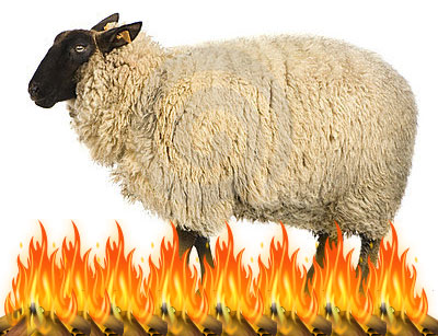 firesheep_header